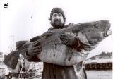 Bałtyk martwym i toksycznym morzem? To realne! W tym roku Godzina dla Ziemi WWF będzie poświęcona Morzu Bałtyckiemu