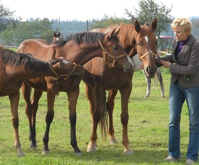 Katarzyna Wiszowaty, główny specjalista ds. hodowli koni w stadninie w Prudniku z klaczą biorczynią Newis i Nerqustą ET.