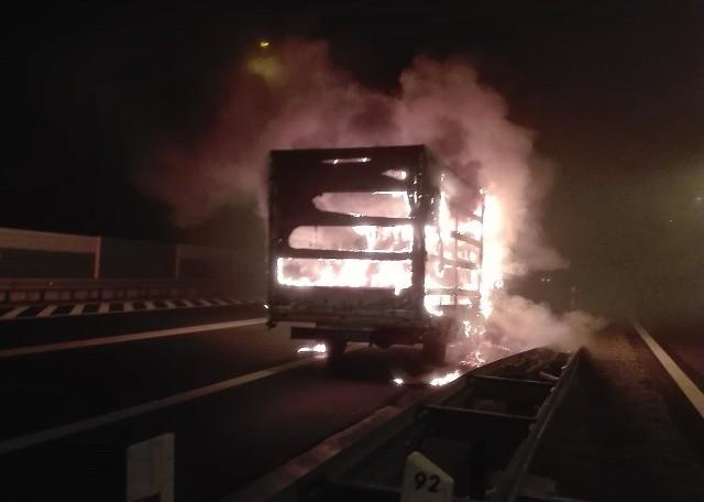 Do zdarzenia doszło w poniedziałek (5 grudnia) na drodze S3 w Gorzowie, na wysokości ul. Sulęcińskiej (kierunek na Zieloną Góra).Informację ze zdjęciami dostaliśmy od naszych Czytelników na Facebooku. Zapalił się bus. Auto spłonęło doszczętnie. W pożarze na szczęście nikt nie ucierpiał. Droga została całkowicie zamknięta. Po ugaszeniu pożaru wprowadzono ruch wahadłowy.Zobacz też: Auta o wartości 5 mln złotych spłonęły w siedzibie dilera Jaguara i Land Rovera
