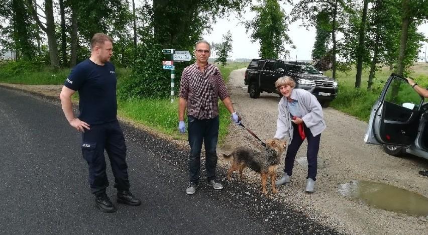 Mieszkaniec Rytla uratowany przez swojego psa. 83-latek topił się w bagnie, ujadanie usłyszeli sąsiedzi. Historia jak z filmu!