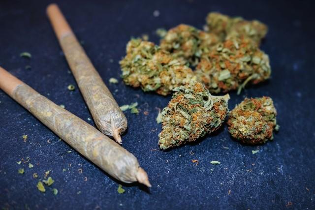 16-letnia dziewczyna uczyła się jeździć autem pod wpływem marihuany.