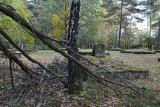 Cmentarz w Stróżówce wymaga interwencji? [Zobacz zdjęcia]