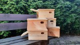 Budki lęgowe dla jerzyków - taki prezent dla szczecinian przygotowały Lasy Miejskie