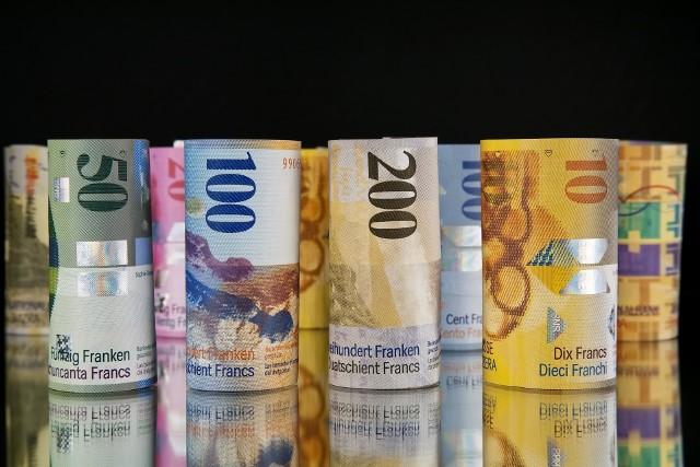 Co piąty (20,4 proc.) czynny kredyt mieszkaniowy jest nominowany we franku.