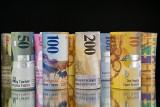 Liczba wszystkich kredytów posiadanych przez frankowiczów wynosi 1,73 mln szt.