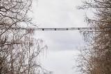 W lesie łagiewnickim w Łodzi zawisła siatkowa konstrukcja, przypuszczalnie pierwsza w Polsce