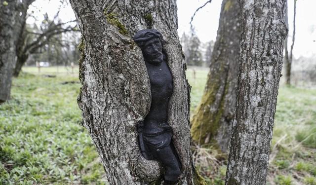 Chrystus uwięziony w drzewie - urokliwy stary cmentarz w Łupkowie.
