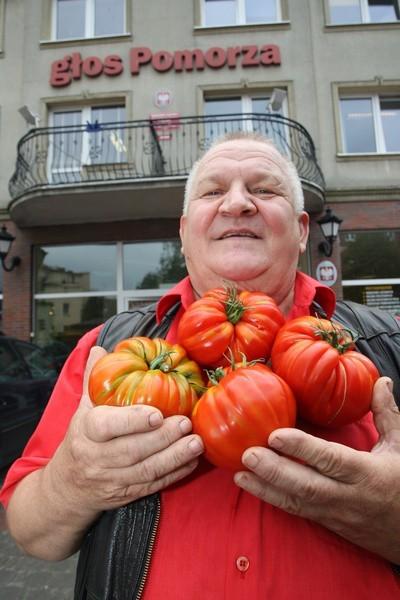 Tadeusz Stec ze swoimi pomidorami.