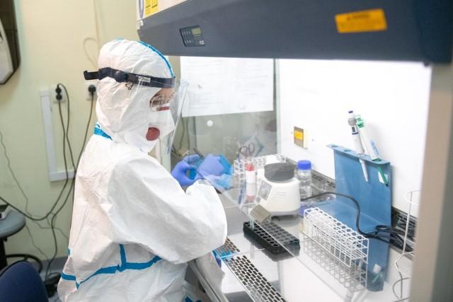 Zakażenia koronawirusem potwierdzono u uczniów i nauczycieli z grudziądzkich placówek oświatowych