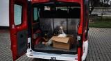 Strażacy z Grębowa tym razem nie gasili pożaru. Pomagali łabędziowi (ZDJĘCIA)