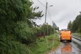 Wciąż wielu mieszkańców Wielkopolski nie ma prądu. W szczytowym momencie prądu nie miało 100 tysięcy gospodarstw w Wielkopolsce