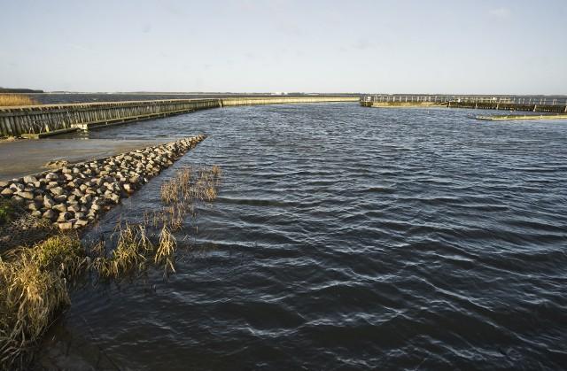 Jezioro Jamno to jedno z nielicznych jezior przybrzeżnych w Polsce. Do niedawna było słono-słodkim, dziś jest akwenem tylko słodkowodnym. To przede wszystkim przez wrota sztormowe