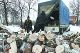 Droga rozdaje potrzebującym opał na zimę (zdjęcia)
