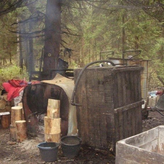 funkcjonariusze zabezpieczyli ok. 900 litów zacieru, 15 litrów gotowego wyrobu oraz 120 litrów tzw. surówki