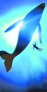Niebieski wieloryb: szokująca gra, która kończy się samobójstwem. Co to jest Blue Whale Challenge?