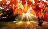 Kiedy równonoc jesienna? Równonoc jesienna 2021. Jak przesilenie jesienne wpływa na nasz organizm?