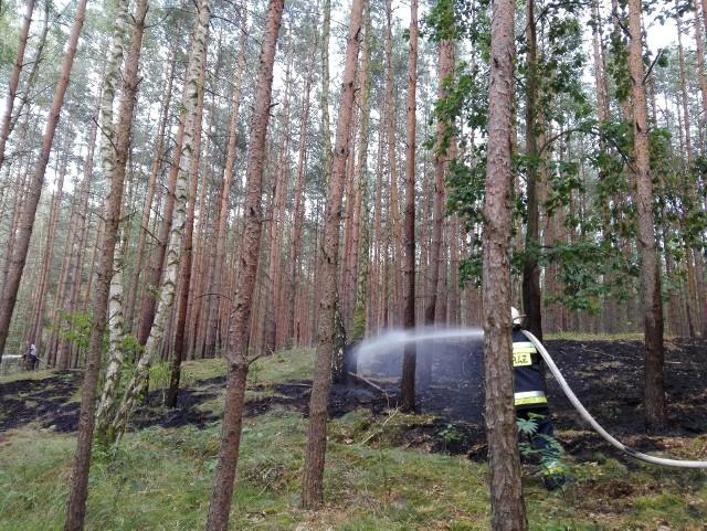 Strażacy z OSP Nowawieś Chełmińska chcą kupić pierwszy w powiecie quad dla swojej jednostki. Mówią, że przyda się zwłaszcza w terenach leśnych