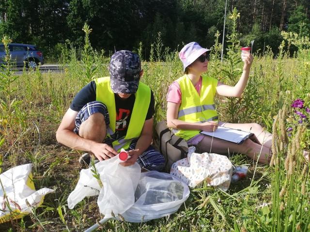 Kolejna faza projektu Eden City to badania w terenie. Studenci UwB sprawdzą wpływ łąk kwietnych na samopoczucie białostoczan. Badania rozpoczną się 30 czerwca.