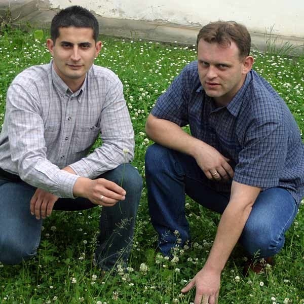 Dzięki koniczynie możemy wzbogacić glebę w naszym ogrodzie w naturalny łatwo przyswajalny prze inne rośliny azot, przekonują Hubert Ćwik i Piotr Flaga z Podkarpackiego Ośrodka Doradztwa Rolniczego w Boguchwale.