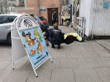 Awantura w kolejce przed pocztą podczas godzin dla seniorów. Zaatakował 72-letnią kobietę! Trafiła do szpitala 19.04.2020