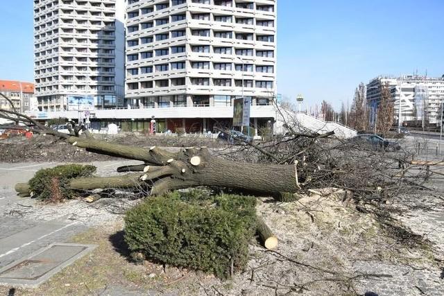 Wycinka drzew niedaleko placu Grunwaldzkiego