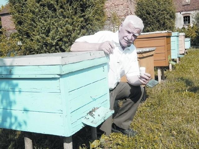 Stanisław Kamiński pszczoły ma w genach. To rodzinna tradycja. Dziś opiekuje się 70 pszczelimi rodzinami. Syn pana Stanisława ma kolejnych siedem uli. Rodzina Kamińskich z produkcji miodu znana jest w całej okolicy.
