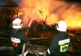 Duży pożar pod Wrocławiem. Gasiło go kilkanaście zastępów straży