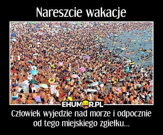Okazuje się, że nasze polskie Morze Bałtyckie może być...