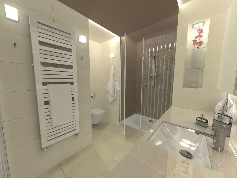 Remont Połączenie Wc Z łazienką Nowiny