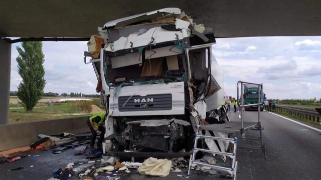 Wypadek na A2 wydarzył się we wtorek, 3 września na 178. kilometrze autostrady. Zderzyły się dwie ciężarówki. Do zdarzenia doszło około południa.Przejdź do kolejnego zdjęcia --->