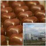 Jeszcze w tym roku ruszy produkcja czekoladek w Nowej Soli. Budowa fabryki dobiega końca. Część pracowników już jest zatrudniona