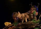 Teatr Dramatyczny. Festiwal Teatralny Ode. Wilczek Milczek - premiera (zdjęcia, wideo)