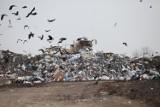 W Opolu możliwe są podwyżki stawek za odbiór odpadów