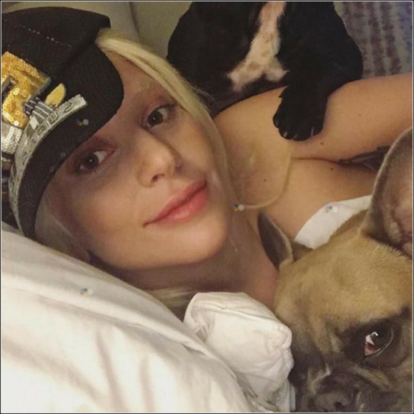 Opiekun psów Lady Gagi postrzelony, dwa buldogi skradzione. Piosenkarka daje za ich odzyskanie pół miliona dolarów