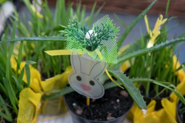 Fajne życzenia Wielkanocne Krótkie śmieszne Wierszyki Na