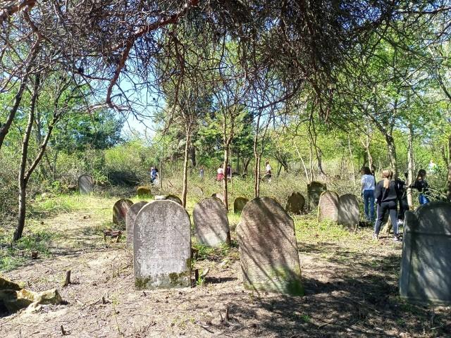 Liczni wolontariusze posprzątali cmentarz żydowski w Małogoszczu. Akcja zakończyła się pełnym sukcesem.