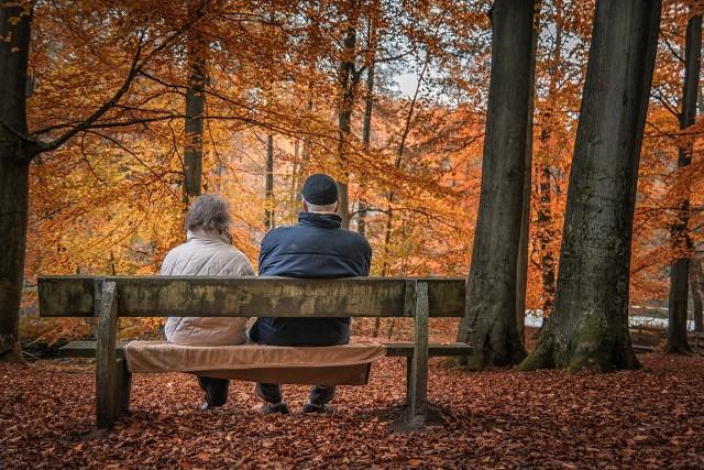 Czerwcowi emeryci do 18 października będą mieli przeliczone swoje świadczenia. Dostaną spłatę różnicy.