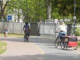 Dzieci idą do szkoły. Rodzice powinni zadbać o ich bezpieczeństwo na drodze