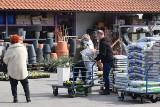 Spokojna sobota w czynnych marketach budowlanych i ogrodniczych w Kielcach i regionie. Tłumów nie było (ZDJĘCIA, WIDEO)