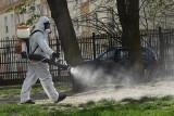Akcja oprysków przeciwko kleszczom w Zielonej Górze. Opryskanych zostanie milion metrów kwadratowych miejskich terenów w 150 lokalizacjach