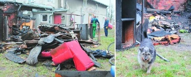 Tyle wydobyli strażacy z wnętrza szopki