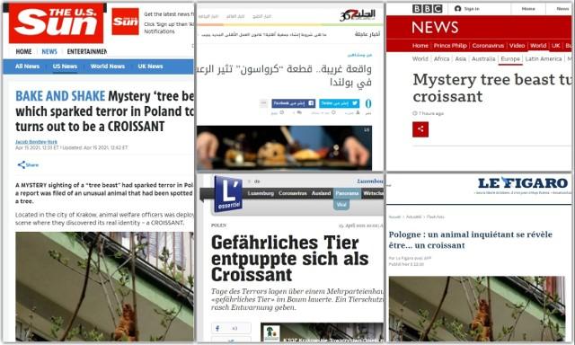 Zabawną historię opisały media na całym świecie. Zobacz tytuły z zagranicznych mediów.