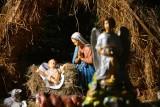 Piękna bożonarodzeniowa szopka w kościele świętego Jana Chrzciciela w Radomiu. Galeria zdjęć