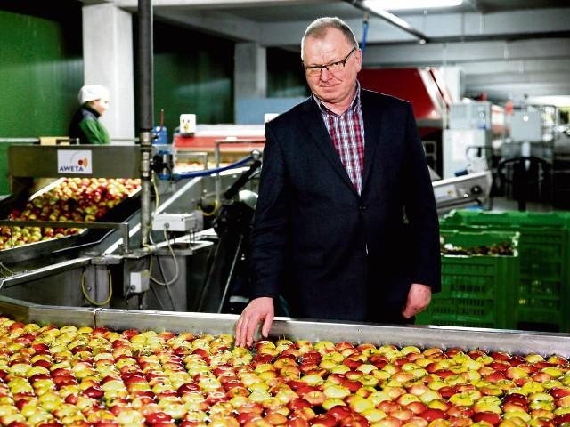 """- Brakuje rynków zbytu - mówi Jan Golonka, prezes Sądeckiej Grupy Producentów """"Owoc Łącki"""". W 2014 r. Rosja wprowadziła embargo na polskie owoce. Wtedy zaczęły się kłopoty sadowników"""