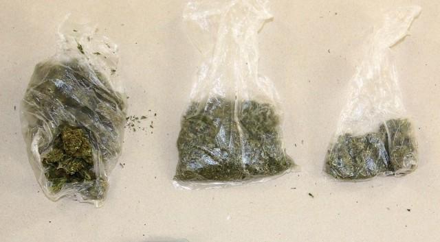 Skonfiskowana przed koszalińską policję marihuana.