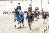 Ośrodek jeździecki Zakrzów znów walczy o życie