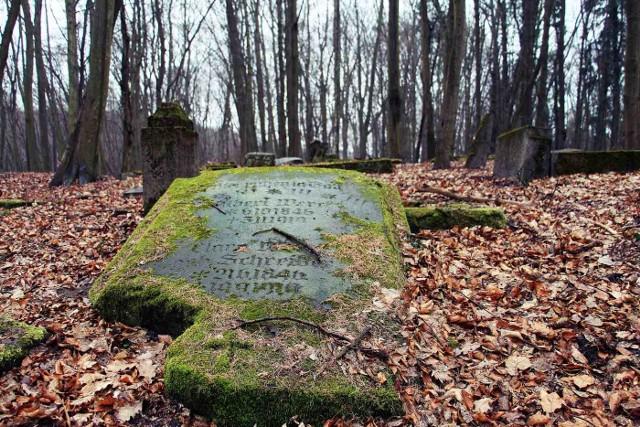 W Lubuskiem można napotkać wiele starych, nierzadko zapomnianych cmentarzy, o których istnieniu wiedzą nieliczni. Zwykle ukryte są w lasach lub w gęstych zaroślach gdzieś na uboczu wsi. Niektóre z nich od czasu do czasu odwiedzają jeszcze ci, którzy pragną uczcić pamięć dawnych mieszkańców tych ziem. Wybraliśmy się śladem historii, aby odkryć przed Wami część z tych nekropolii. Zapraszamy do naszej Galerii>>>