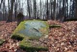 Tajemnicze lubuskie cmentarze. Ukryte w lasach i zaroślach, często zapomniane przez ludzi