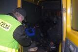 12 nielegalnych imigrantów z Sri Lanki ukrytych w dostawczym mercedesie (zdjęcie)