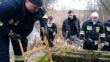 Poszukiwano Adriana Dudka z Brodnicy. Nie znaleziono śladu po nim, ale trafiono na tajemniczy znicz